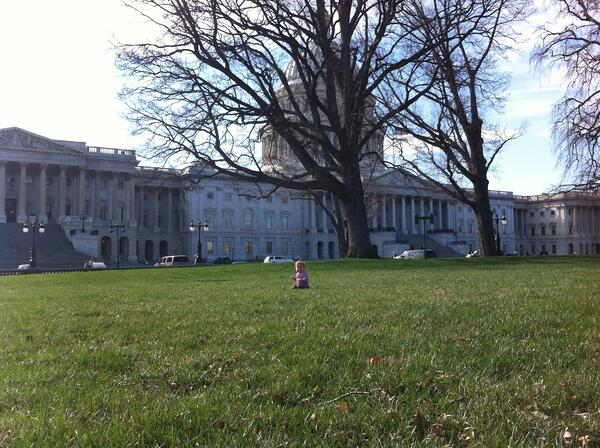 Rosie on the front lawn of the capitol